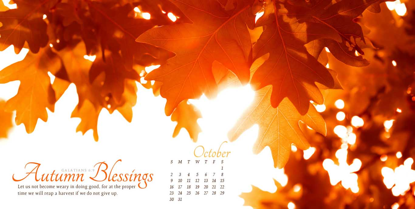 2011-autumn-leaves-wallpaper