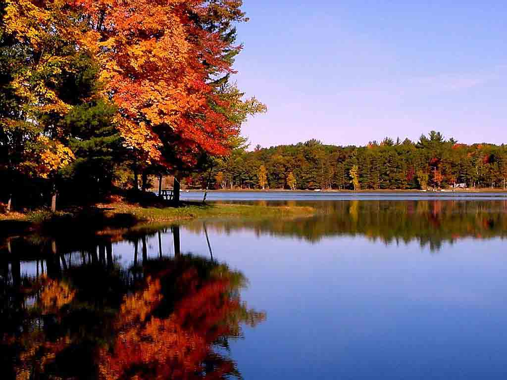 Cute-View-Autumn-Wallpaper