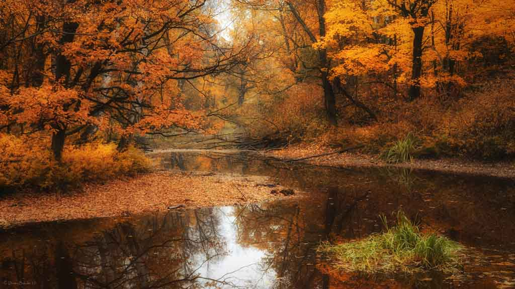 River-at-autumn-wallpaper