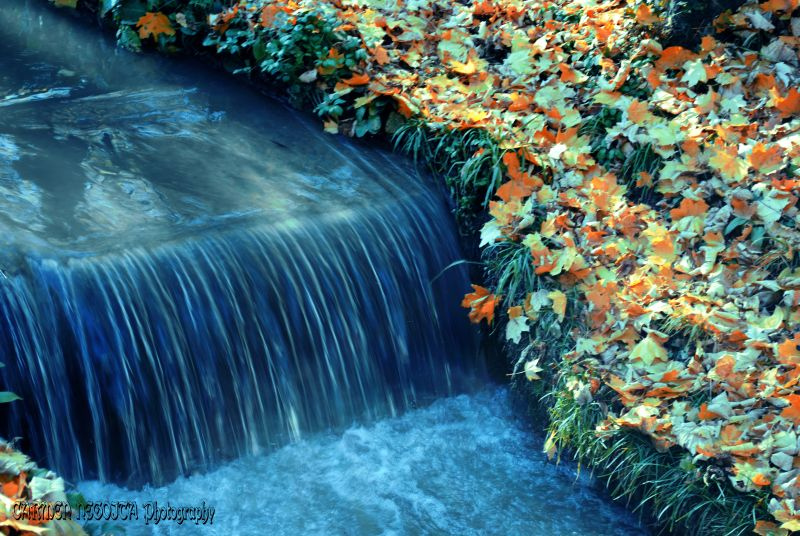 Romantic-Autumn-Wall papers