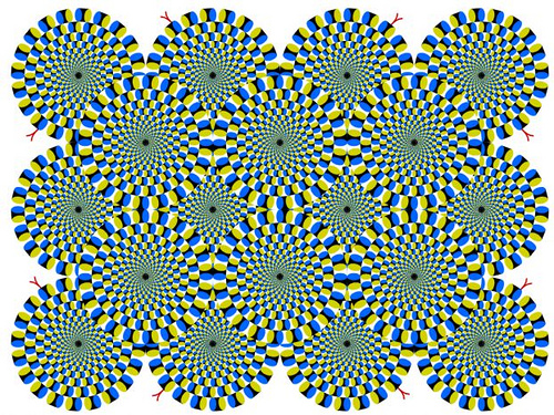 Optical Illusions (26)