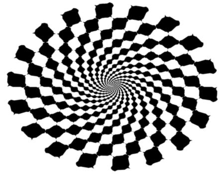 Optical Illusions (7)
