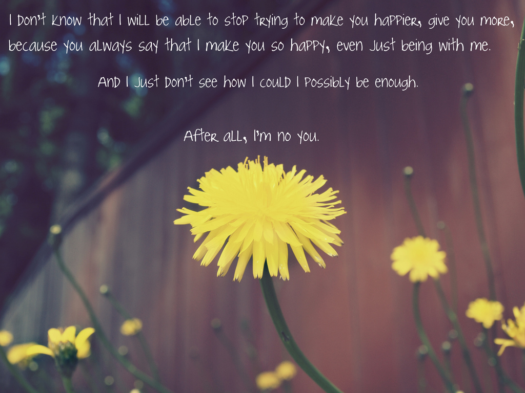 50 Cute Quotes About Love