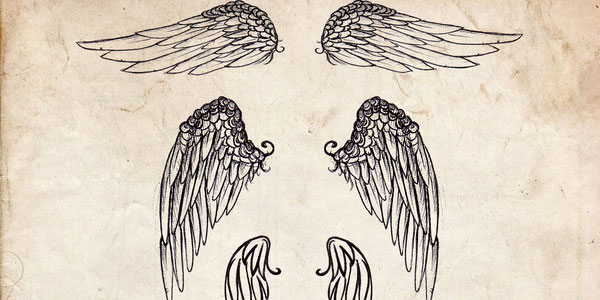 different-design-wings