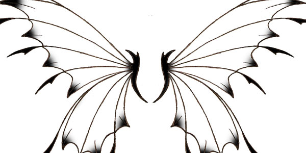 fairy-wing