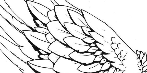 hermas-wings