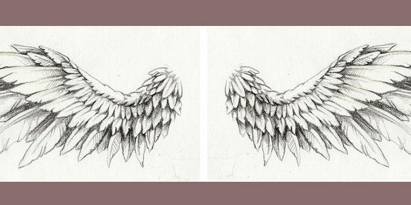 little-wings