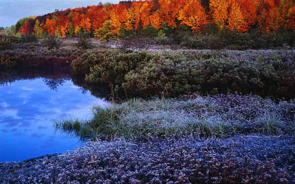 Autumn_colors_Wallpapers