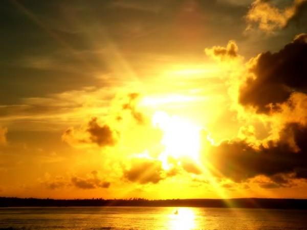Sun Shine (31)