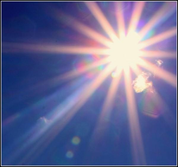 Sun Shine (20)