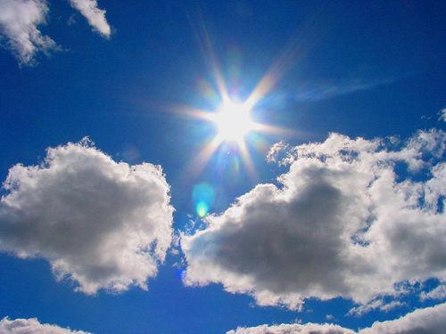 Sun Shine (3)
