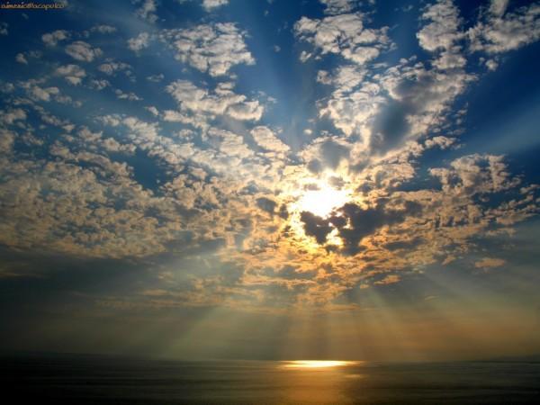 Sun Shine (7)