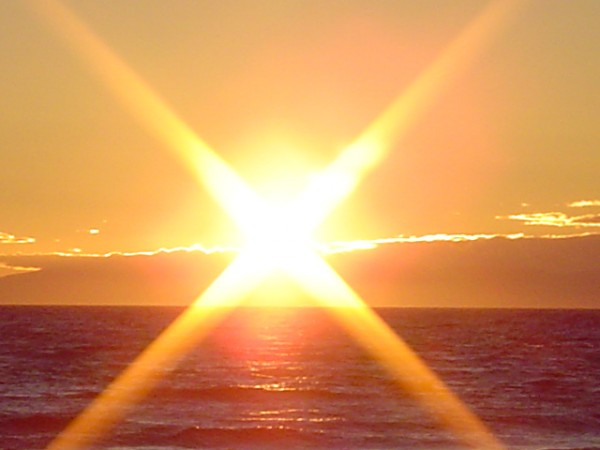 Sun Shine (15)