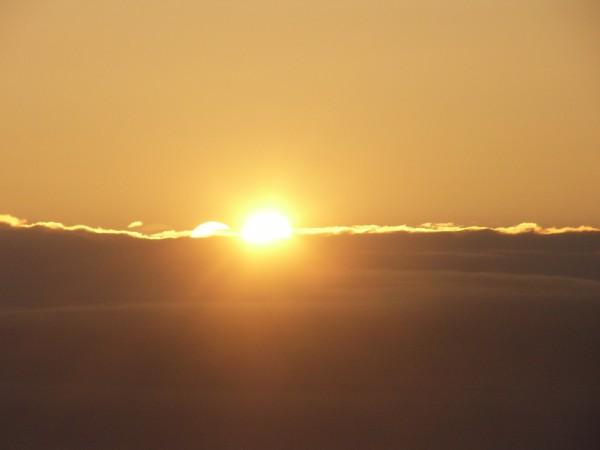 Sun Shine (10)