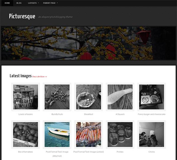 Picturesque WordPress Theme