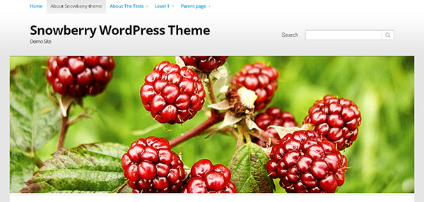 Snowberry WordPress Theme