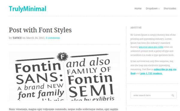 Minimal Theme WordPress Theme