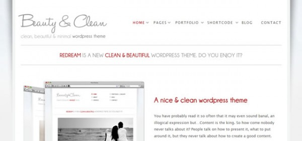 Beauty and Clean Theme