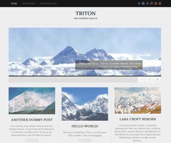 Triton Minimalist WordPress Themes